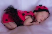 maternity and newborn photography - newborn baby girl in lady bug dress